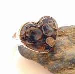 Turtella Jasper Sterling Silver Ring Size 6
