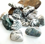Tree Agate Gemstone