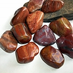 Petrified Wood Polished Gemstone